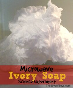 Ivory Soap Experiment – Only Soap and Microwave Needed